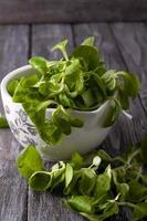 färsk grön sallad med spenat foto