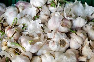 massor av vitlöklökor till salu på en marknad foto