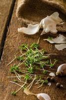 inhemsk bio vitlök - tjeck, kryddor och färska mikrogreener foto
