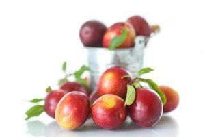 cherry-plommon foto