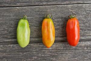 mogna stadier av tomaten foto
