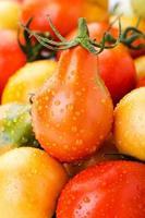 färgglada tomater i droppar vatt foto
