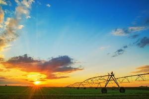 automatiserat odlingssystem för jordbruk i solnedgången foto