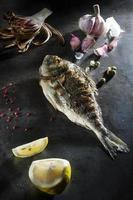 orata, grillad fisk foto