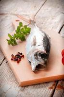 färsk fisk foto