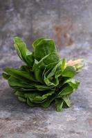 grön romaine sallad, cos foto