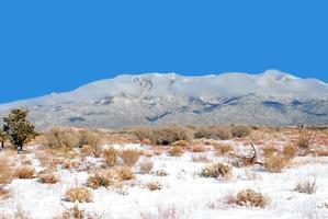 snö på sandierna foto