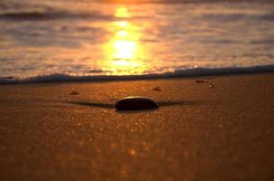 solnedgång rock