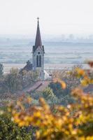 kyrka i en by och en träd - vertikal utsikt foto