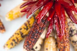 ristra av chilipeppar och majs foto