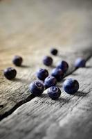 blåbär foto