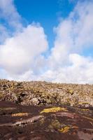 blå lagun - det berömda isländska spaet foto