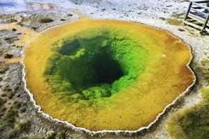 morgon härlighet pool i Yellowstone nationalpark foto