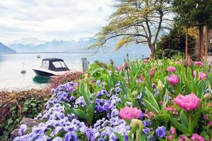 schweiziska landskap. foto