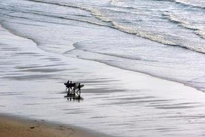 flickor som kommer in i vatten med surfbrädor foto