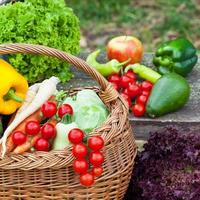 friska orgsnic grönsaker foto