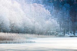 vinter sjö foto