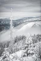 vintervandring