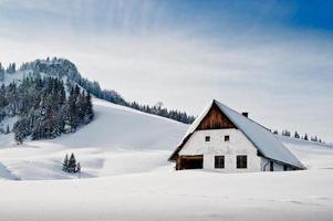 vintern idyllisk foto