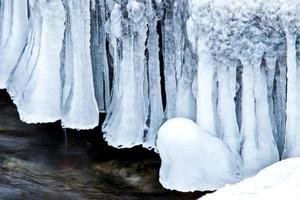 vintern i ontario foto