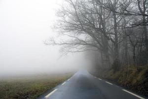 väg in i landskap med dimma