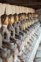 rad med buddhastaty. foto