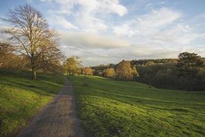 landskapsvy av ett landspark foto