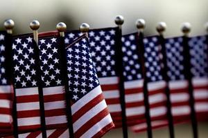 USA: s flaggor i rad foto