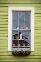 fönster med blomkrukor foto