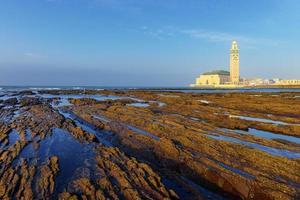 detalj av nakna stenar på grund av lågvatten i casablanca, Marocko. foto