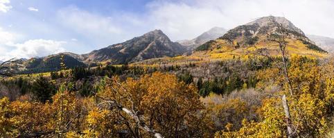 höst i wasatch-bergen längs den alpina slingan (utah) foto