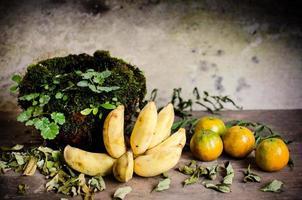 bananapelsiner och keramisk burkskydd med mossa foto