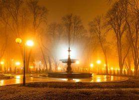 stadspark på natten foto