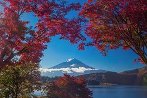 mt. fuji på hösten foto