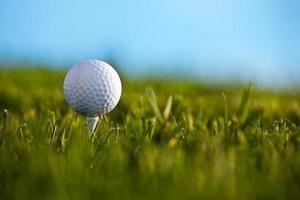 golfboll på tee foto
