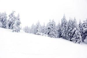 snöig berg.