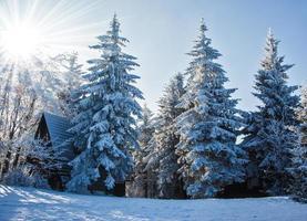 perfekt nyår i de tjeckiska tatraerna