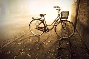 cykel under hösten foto