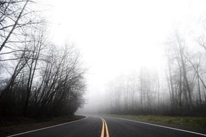 asfaltvägen försvinner i en dimmig skogsavgrund.