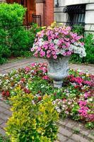 blomsterarrangemang i elegant urban trädgård foto