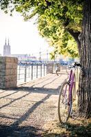 cykelfasta redskap på stadsgatan under träd foto