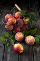 korg med nektariner och persikor foto