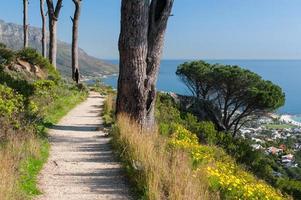 kustlandskap med grusvandringsled och träd foto