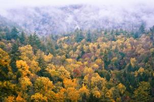 autumn monolog foto