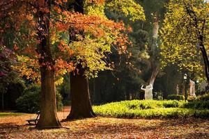 botanisk trädgård, buenos aires foto