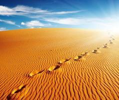landskap med fotspår på en sanddyn på en solig dag foto