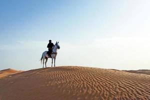 Sahara öknen
