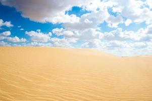 öken i Egypten foto