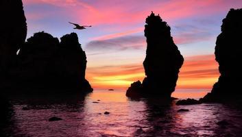 underbar soluppgång vid havet