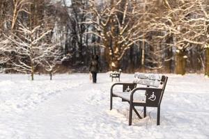 gångväg med bänkar i vinterparken. foto